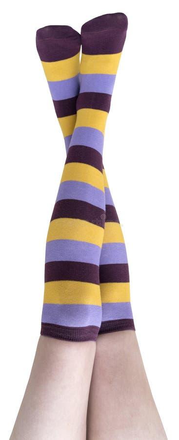 Calcetines femeninos foto de archivo libre de regalías