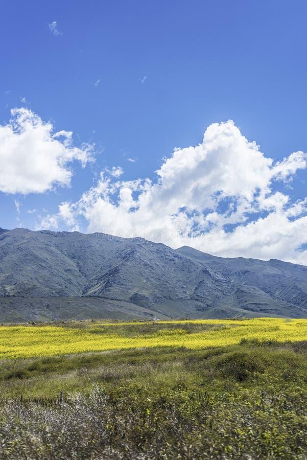 Free Calchaqui Valley In Tucuman, Argentina Stock Photos - 48959163