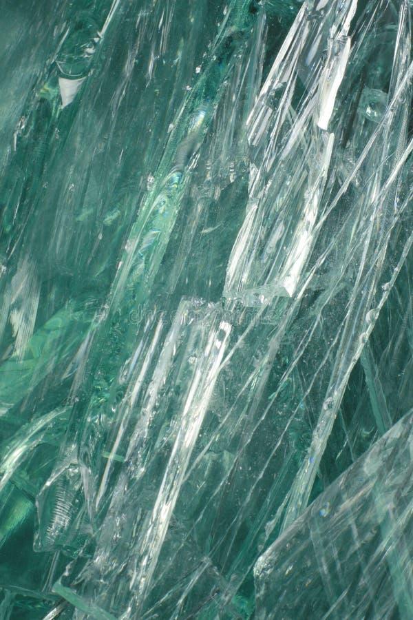Calcin vert photo libre de droits