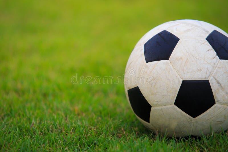 Calcio sul campo di erba verde fotografie stock