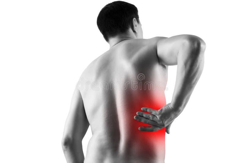 Calcoli renali, dolore nel corpo di un uomo isolato su fondo bianco, malattie croniche del concetto di sistema urinario immagini stock libere da diritti