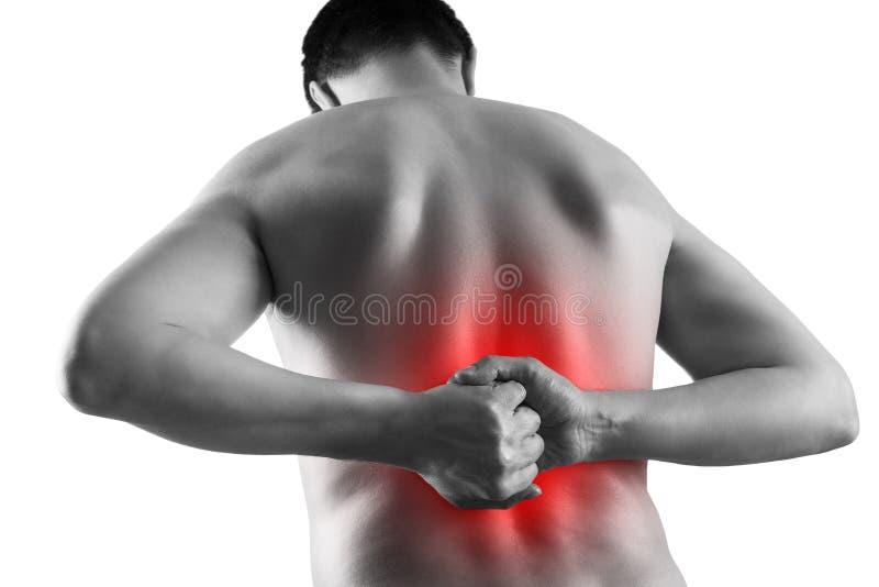 Calcoli renali, dolore nel corpo di un uomo isolato su fondo bianco, malattie croniche del concetto di sistema urinario immagine stock