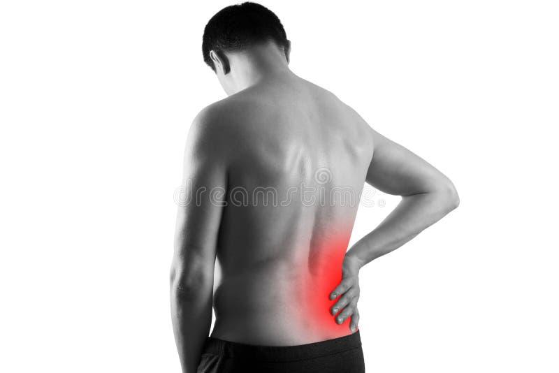 Calcoli renali, dolore nel corpo di un uomo isolato su fondo bianco, malattie croniche del concetto di sistema urinario immagini stock