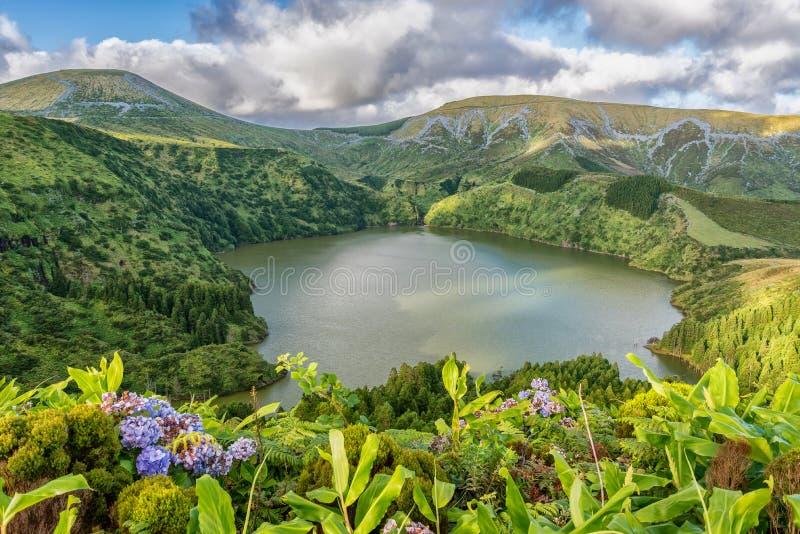 Caldeira Funda på ön av Flores i Azoresna, Portugal fotografering för bildbyråer
