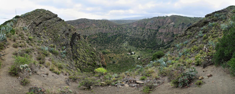 Caldera de Bandama - vulkanisk krater i ön av Gran Canaria royaltyfri fotografi