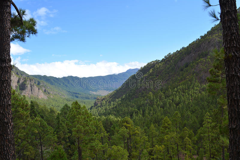Caldera de Taburiente i La Palma, kanariefågelöar, Spanien arkivfoto