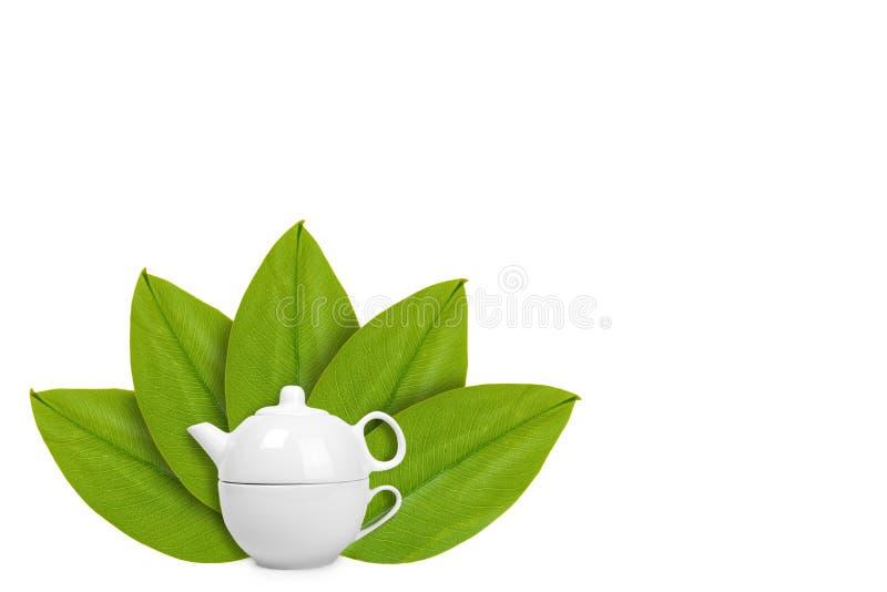 caldera o tetera de cerámica blanca con la taza en el fondo de hojas verdes Aislado en blanco noción del origen natural foto de archivo libre de regalías