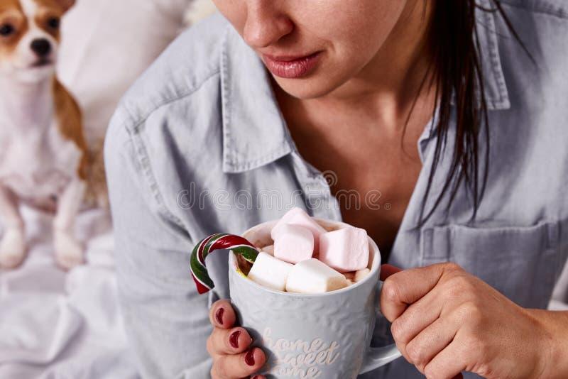 Caldo dolce della bella della donna di Buon Natale bevanda castana di mattina fotografia stock libera da diritti