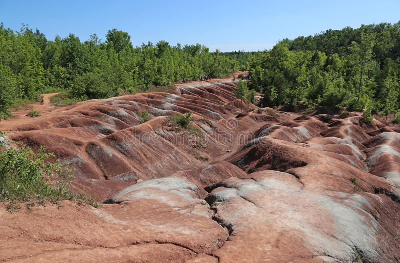 Caledon Badlands. The red soil of the Cheltenham Badlands located in Caledon, Ontario, Canada royalty free stock photos