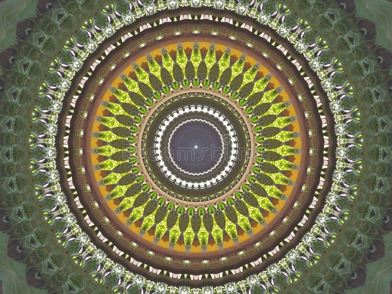 Caleidoscoop vector illustratie
