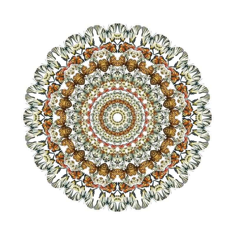Caleidoscooppatroon met kleurrijke die vlinders op witte achtergrond wordt geïsoleerd vector illustratie