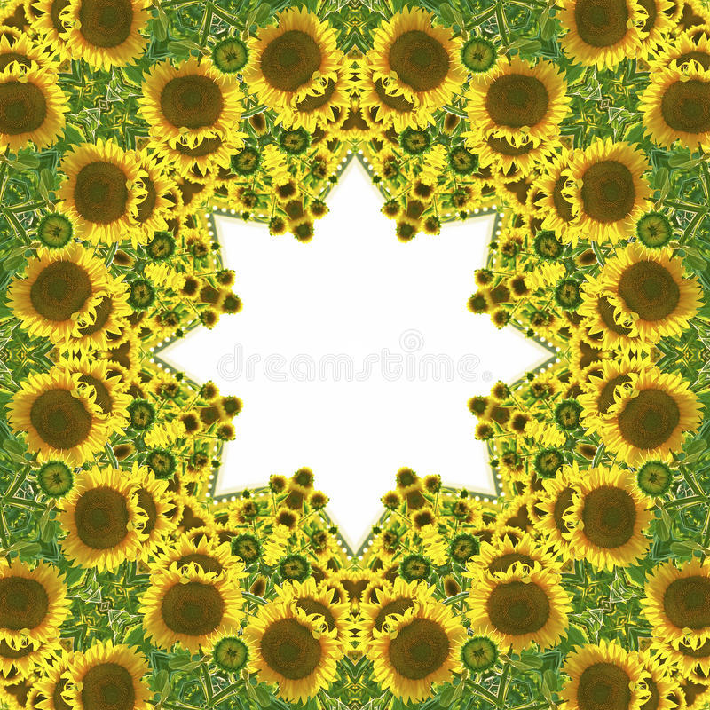 Caleidoscopio con motivos naturales de girasoles libre illustration