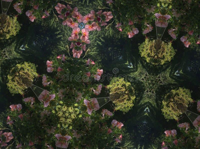 Caleidoscopio de la flor imagenes de archivo