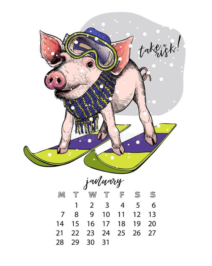 Calendário do ano com porco Ilustrações mensais O leitão tirado mão veste o equipamento do esqui, chapéu, lenço, óculos de proteç ilustração royalty free