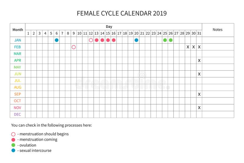 Calendário fêmea do ciclo ilustração do vetor
