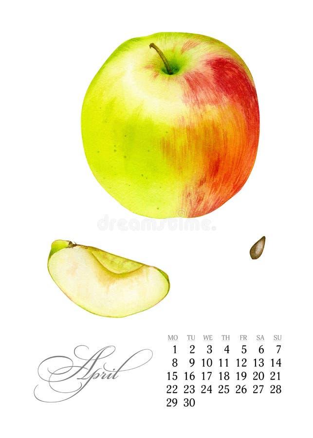 Calendário imprimível elegante 2019 abril Aquarela Apple Placa botânica suculento - abandone o cacto, o cacto de pera espinhosa e ilustração stock