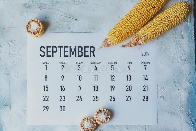 Calend?rio de setembro Conceito do outono e do outono Tempo de colheita fotos de stock