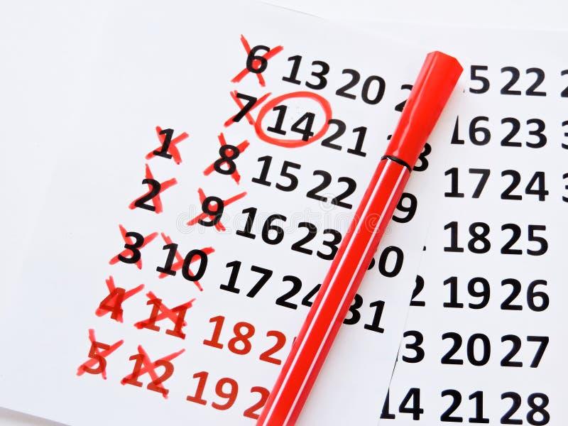 Страница календаря с красными сердцами 14-ого февраля дня Святого Валентина Святого Романтичный, концепция дня Валентайн стоковая фотография rf