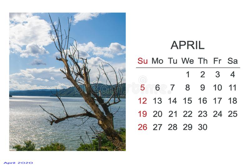 Calendar for 2020. April.With pictures. Calendar for 2020. April. A beautiful photo with a dry tree, a blue river and a sky with clouds stock images
