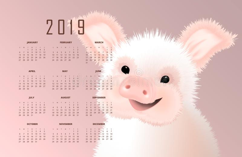 Calendar with the eastern symbol of 2019 the Pig. Happy smiling cute small piggy vector illustartion on pink background vector illustration