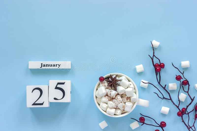 Calendar January 25 Cup of cocoa, marshmallows and branch berries stock photography