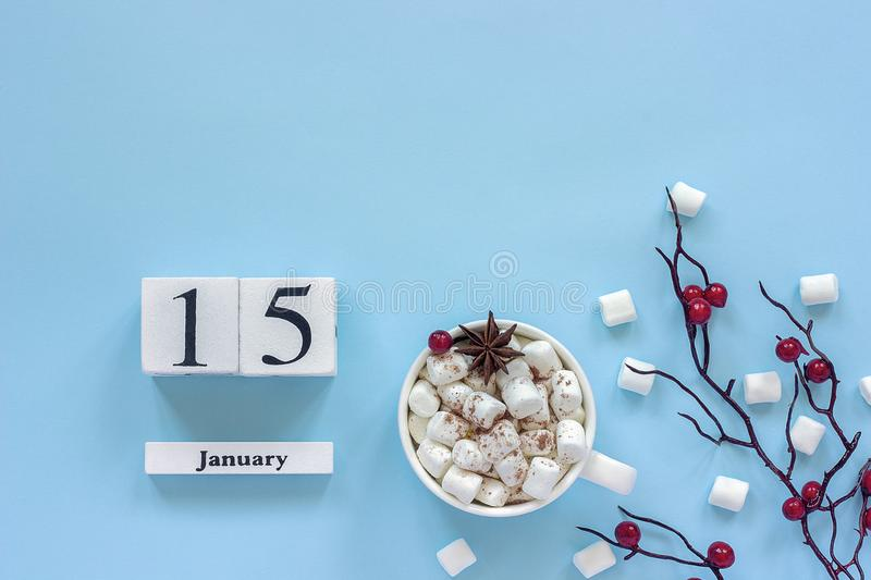 Calendar January 15 Cup of cocoa, marshmallows and branch berries stock photos
