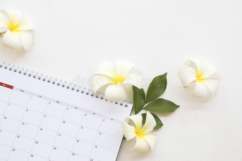 Calendar monthly planner of business work. Calendar monthly planner for business work with white flower frangipani arrangement on background white at office desk stock images