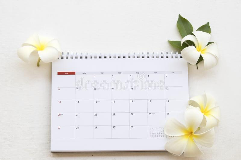 Calendar monthly planner of business work. Calendar monthly planner for business work with white flower frangipani arrangement on background white at office desk royalty free stock images