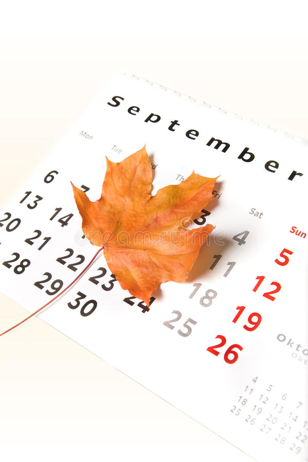 Calendar page and leaf royalty free stock photo