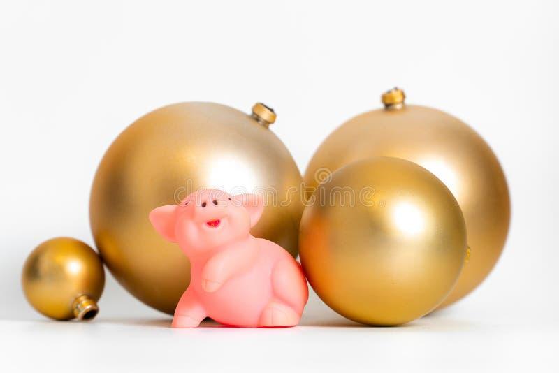 Calendario cultural tradicional chino del zodiaco del símbolo del Año Nuevo del cerdo de oro de las bolas aislado foto de archivo libre de regalías
