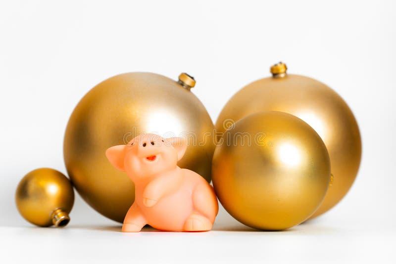 Calendario cultural tradicional chino del zodiaco del símbolo del Año Nuevo del cerdo de oro de las bolas aislado imagen de archivo