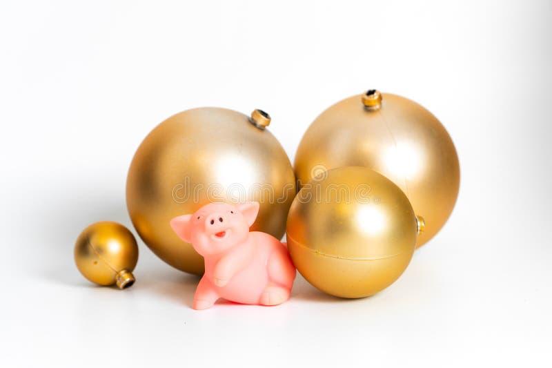 Calendario cultural tradicional chino del zodiaco del símbolo del Año Nuevo del cerdo de oro de las bolas aislado fotografía de archivo