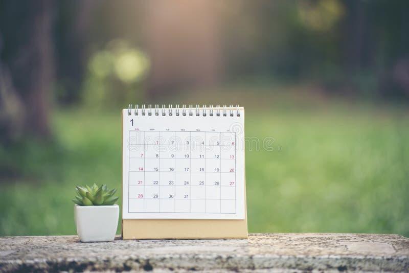 Calendario de escritorio 2019 y lugar del cactus en el escritorio de oficina Calendario para que planificador haga el calendario, foto de archivo