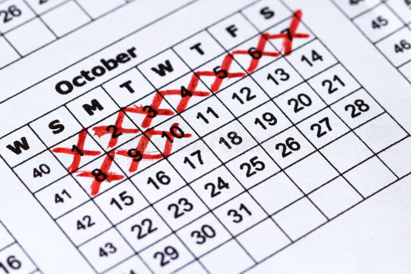 Calendario di gravidanza Calendario preciso di macro vista fotografia stock
