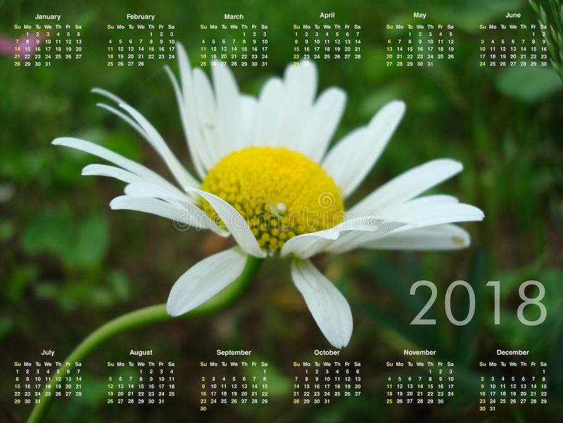 Calendario per 2018 fotografia stock
