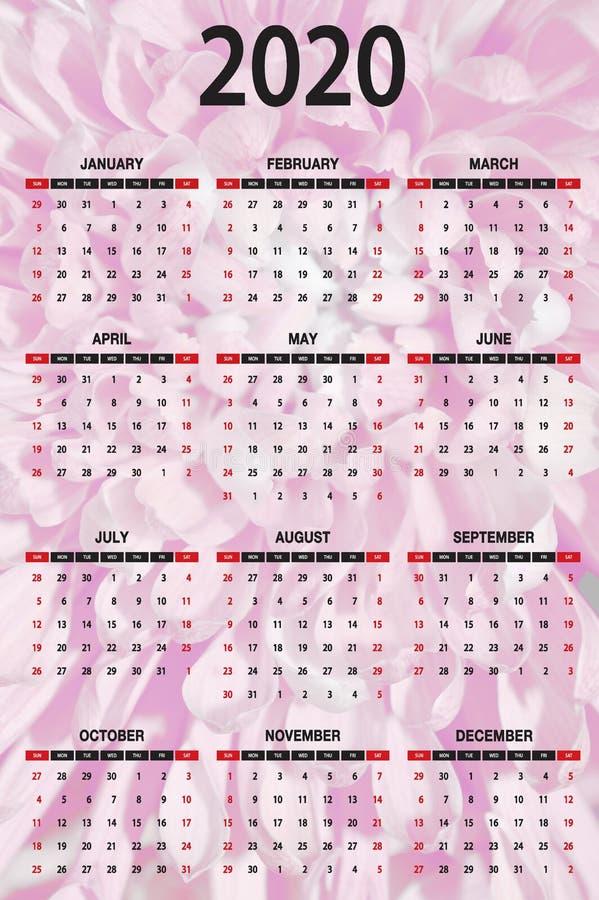 2020 Calendrier Une Page Lettres noires Numéros Dahlia Rose Arrière-plan photos stock