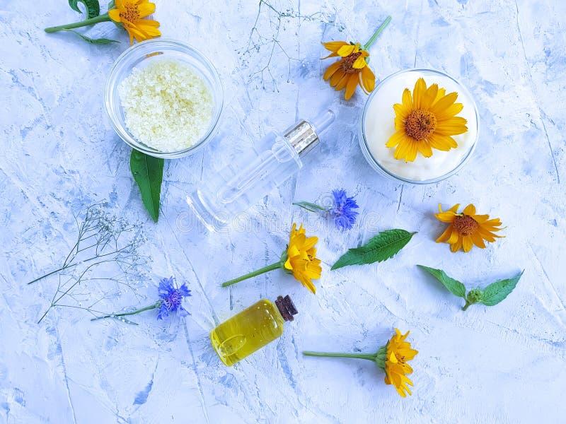 Calendula naturel d'aromatherapy de fleur cosmétique crème sur un fond concret gris photographie stock libre de droits