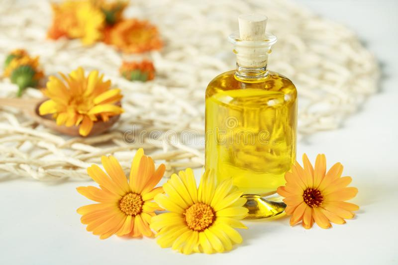 Calendula oil and orange flowers of calendula for aromatherapy stock image