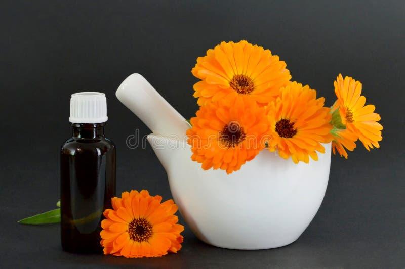 Calendula olej i calendula kwiaty w moździerzu obrazy stock