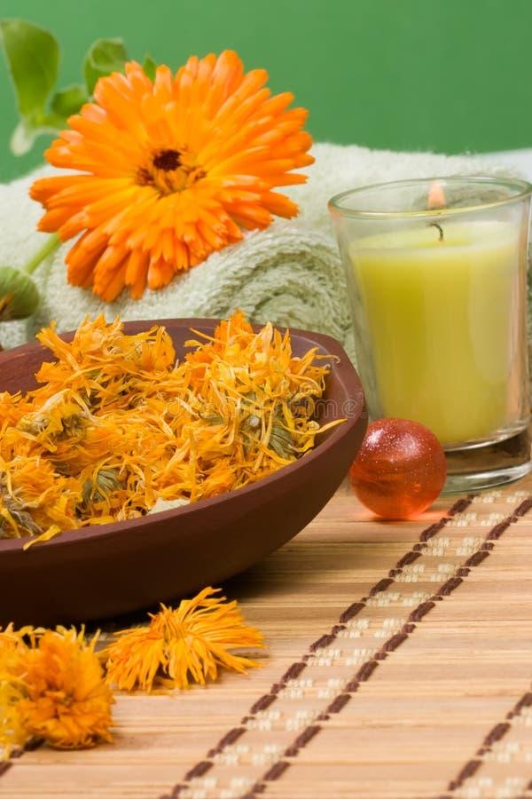 Download Calendula spa set stock photo. Image of orange, scented - 4826392