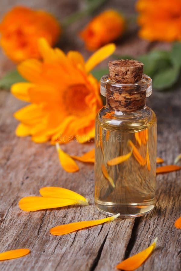 Calendulatinktur i den vertikala glasflaskan och blommor arkivfoton