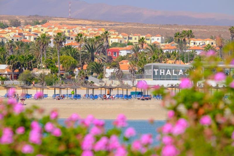CALETA DE FUSTE, FUERTEVENTURA, ΙΣΠΑΝΊΑ - 10 ΦΕΒΡΟΥΑΡΊΟΥ 2019: Άποψη σχετικά με την παραλία Caleta de Fueste στοκ φωτογραφίες