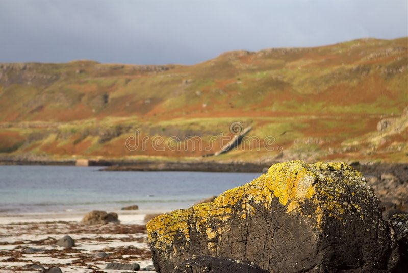 Calgary Beach Mull. Close of of a lichen covered rock on Calgary Beach, Mull. the bay in the background stock images