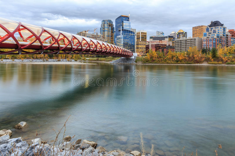 Calgary bij nacht royalty-vrije stock foto