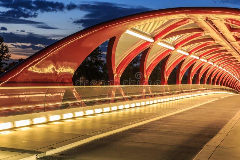 Calgary bij nacht stock fotografie