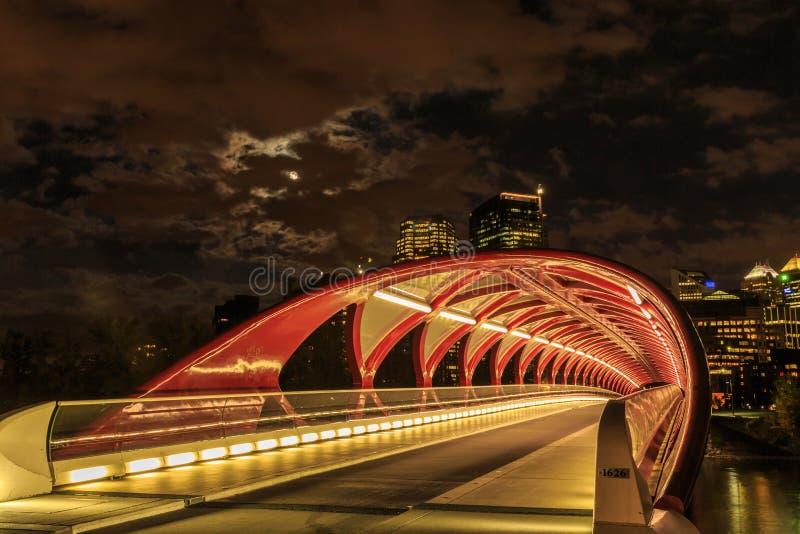 Calgary bij nacht stock foto's