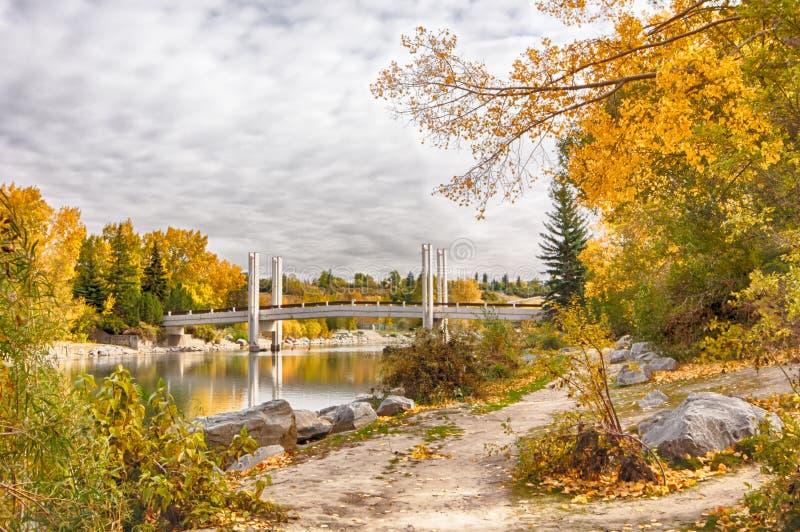 Calgary bro i höst royaltyfri bild