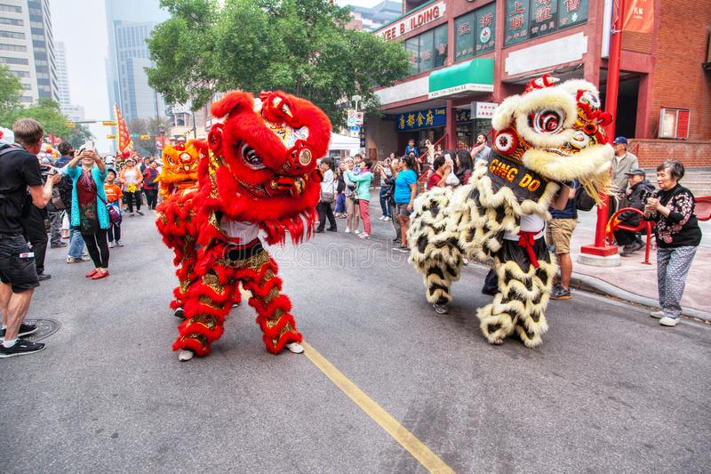 Chinese Lion Dance Parade in Calgary, Alberta, Canada. CALGARY, CANADA - SEP 4, 2018: A crowd watching a Chinese lion dancing parade along Chinatown in Calgary stock photos