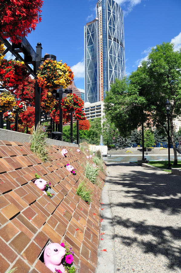 Calgary city park royalty free stock image
