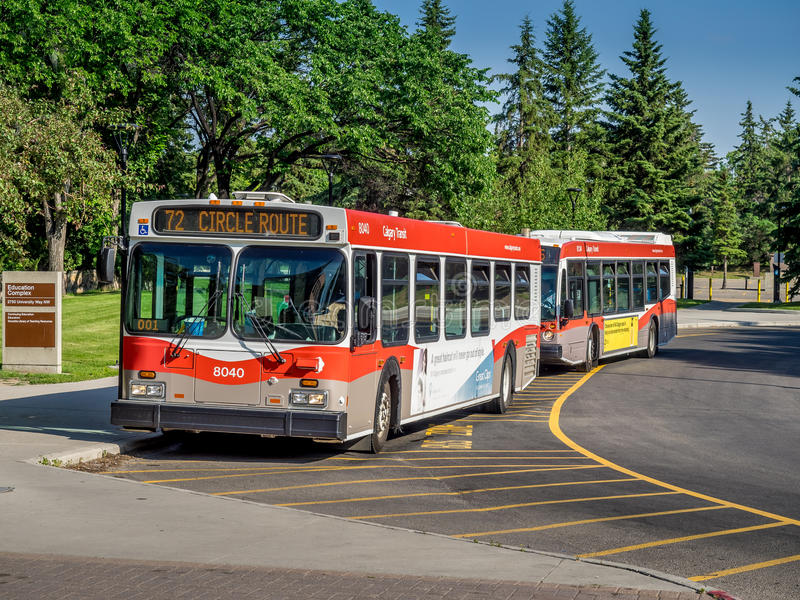 Calgary-Durchfahrtbus lizenzfreie stockbilder